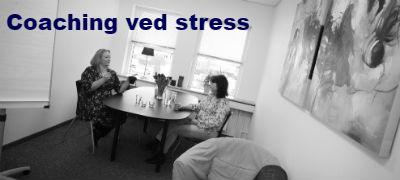 Billede-af-Lene-Damkjaer-ved-en-individuel-coaching-hvor-der-gives-sparring-paa-stress-til-enkelte-medarbejdere-eller-ledere